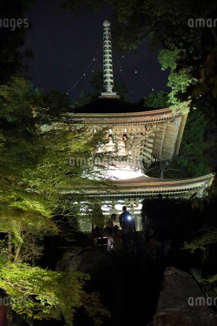 石山寺多宝塔ライトアップの写真素材 [FYI01588821]