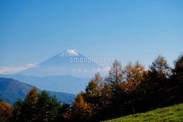 まきば公園と富士山の写真素材 [FYI01589055]