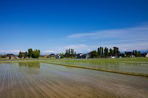 散居村と田園風景の写真素材 [FYI01589080]
