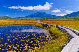 尾瀬の草紅葉と燧ケ岳の写真素材 [FYI01589172]
