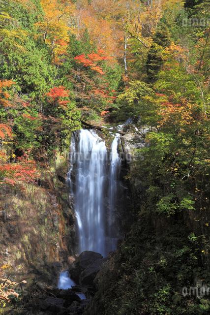 滝と紅葉の写真素材 [FYI01589404]