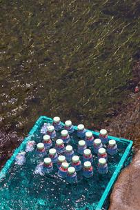 醒ケ井地蔵川とラムネの写真素材 [FYI01589433]
