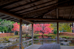嚮陽庭園の写真素材 [FYI01589440]