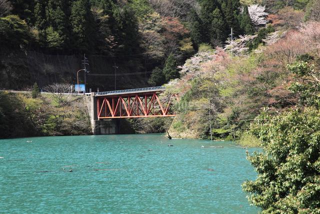 永源寺ダム新緑と橋の写真素材 [FYI01589449]