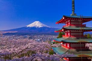 新倉山浅間公園から見た富士山と桜と忠霊塔の写真素材 [FYI01589688]