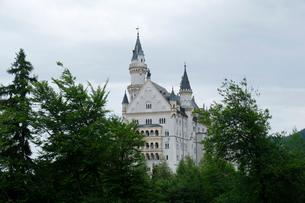 ノイシュヴァンシュタイン城の写真素材 [FYI01589733]