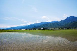 田園風景の写真素材 [FYI01589761]
