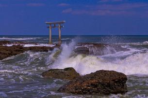 大洗磯前神社の神磯の鳥居と太平洋の写真素材 [FYI01589775]
