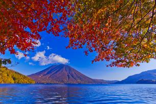 中禅寺湖の紅葉と男体山の写真素材 [FYI01590061]