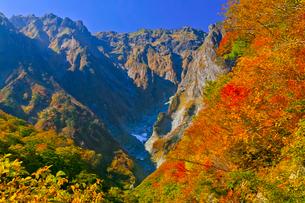 谷川岳 一ノ倉沢の紅葉の写真素材 [FYI01590068]
