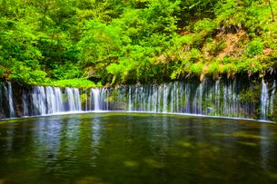 軽井沢の新緑に映える白糸の滝の写真素材 [FYI01590275]