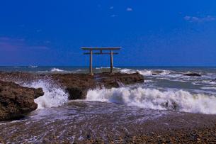 大洗磯前神社の神磯の鳥居と太平洋の写真素材 [FYI01590420]