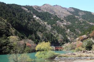 永源寺ダム新緑の写真素材 [FYI01590634]