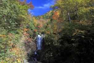 滝と紅葉の写真素材 [FYI01590703]