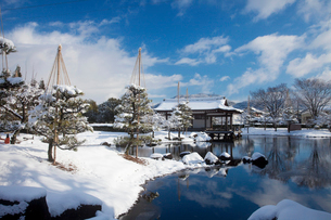 紫式部公園の雪釣の写真素材 [FYI01590800]