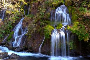 吐竜の滝の写真素材 [FYI01591322]