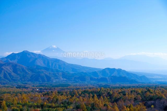 美し森からの富士山の写真素材 [FYI01591329]