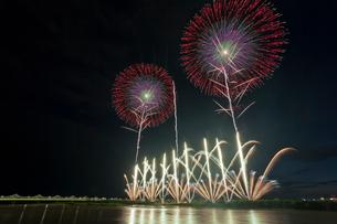 長岡まつり花火大会の天地人花火の写真素材 [FYI01591627]