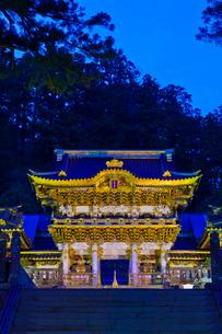 ライトアップした日光東照宮の陽明門の写真素材 [FYI01591755]