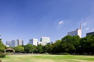 日比谷公園とビルの写真素材 [FYI01592004]
