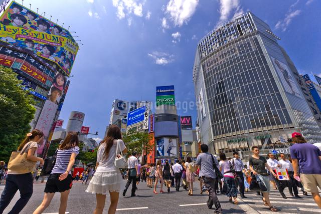 渋谷駅前交差点の写真素材 [FYI01592079]