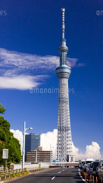 東京スカイツリーと言問橋の写真素材 [FYI01592130]