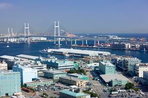 横浜マリンタワーから望む横浜ベイブリッジと山下埠頭の写真素材 [FYI01592285]
