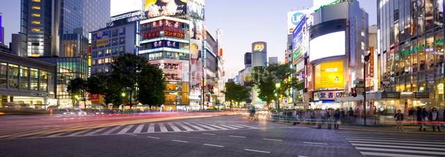 渋谷駅前交差点の夕景の写真素材 [FYI01592316]