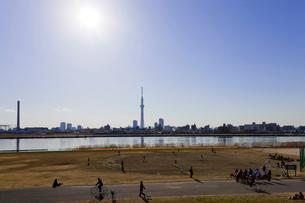 東京スカイツリーと荒川河川敷の写真素材 [FYI01592365]