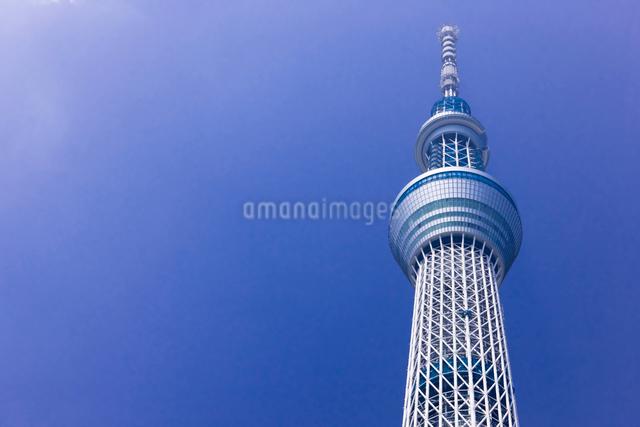 東京スカイツリーの写真素材 [FYI01592416]