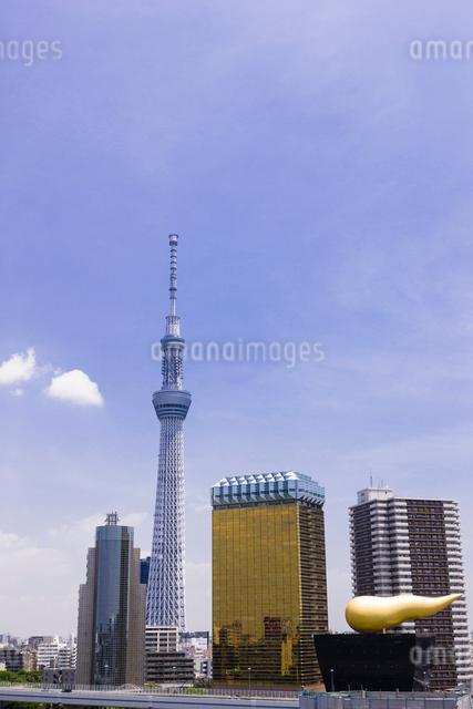東京スカイツリーの写真素材 [FYI01592439]