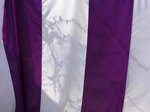 垂れ幕に映る梅の木の影の写真素材 [FYI01592454]
