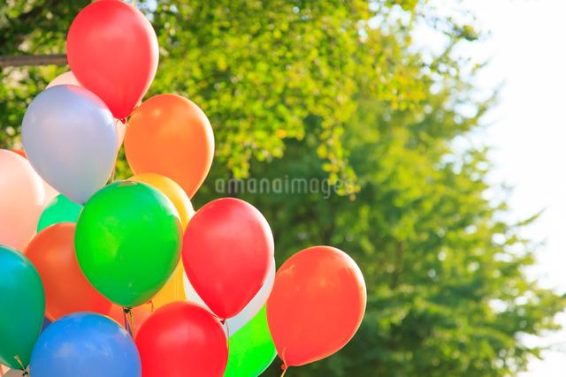 風船と緑の写真素材 [FYI01592515]