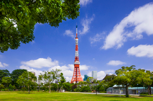 東京タワーと芝公園の写真素材 [FYI01592517]