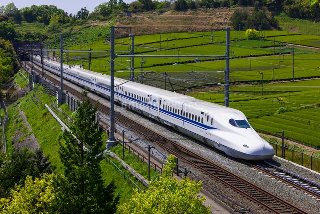 東海道新幹線 N700系の写真素材 [FYI01592739]