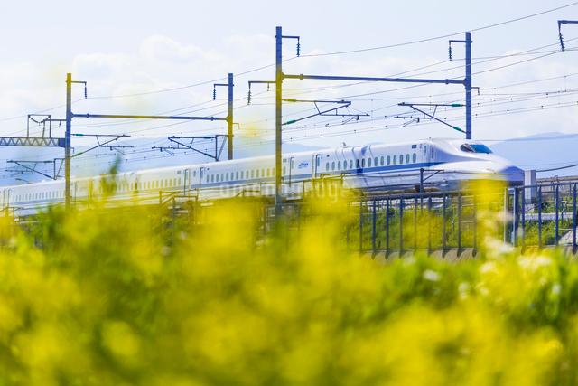 東海道新幹線 N700系の写真素材 [FYI01592816]