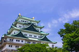 名古屋城の写真素材 [FYI01592817]