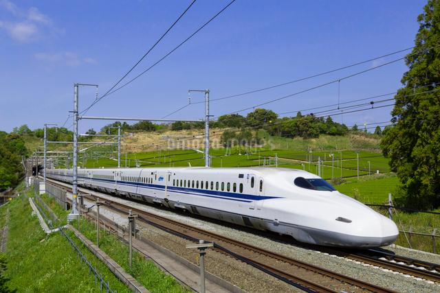 東海道新幹線 N700系の写真素材 [FYI01592826]