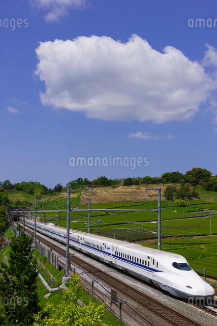 東海道新幹線 N700系の写真素材 [FYI01592890]