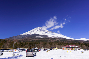 富士山と水ヶ塚公園の写真素材 [FYI01593198]