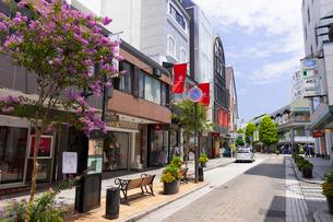 横浜 元町ショッピングストリートの写真素材 [FYI01593537]