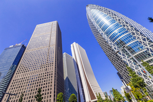 新宿 高層ビル群の写真素材 [FYI01593752]