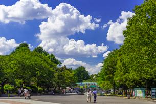 東京都上野恩賜公園 上野動物園入口の写真素材 [FYI01593756]