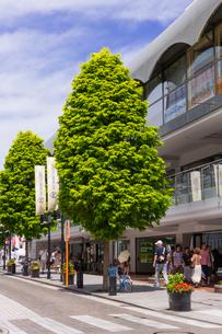 横浜 元町ショッピングストリートの写真素材 [FYI01594031]