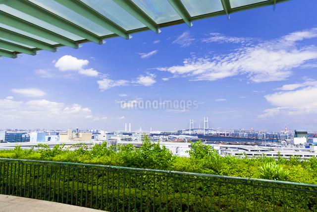 港の見える丘公園の写真素材 [FYI01594054]