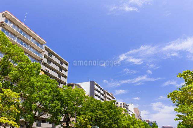 マンションと青空の写真素材 [FYI01594082]