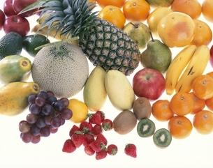 果物の集合の写真素材 [FYI01594170]