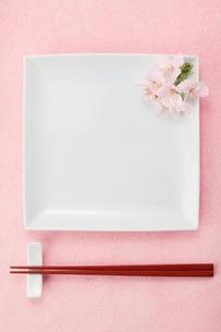 白い皿と桜の花の写真素材 [FYI01594246]