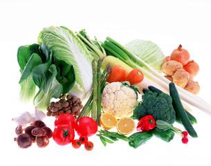 野菜の写真素材 [FYI01594693]