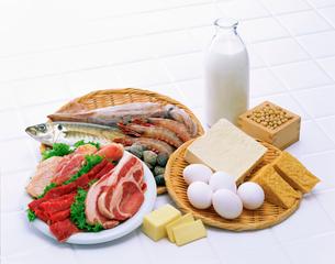 タンパク質源食品の写真素材 [FYI01594817]